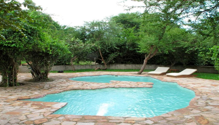 zambia shaped pool